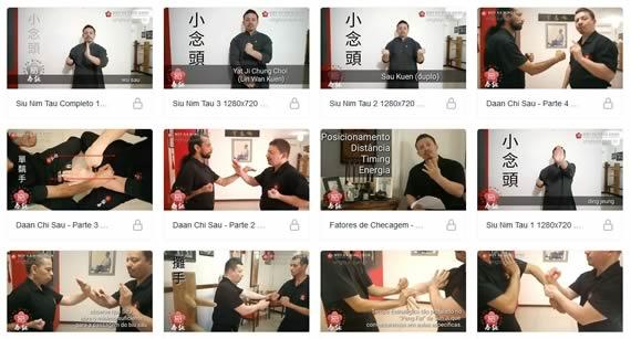 video aulas de wing chun download