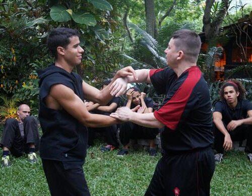 seminario-kung-fu-wing-chun-rj-12 seminarios de kung fu - seminario kung fu wing chun rj 12 500x389 - Seminarios de Kung Fu da Moy Ka Wing Chun