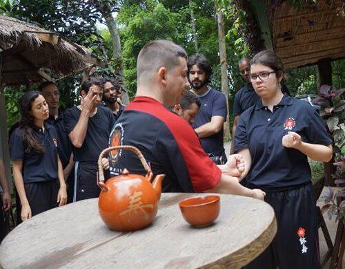 seminario-kung-fu-wing-chun-rj-2 seminarios de kung fu - seminario kung fu wing chun rj 2 500x389 - Seminarios de Kung Fu da Moy Ka Wing Chun