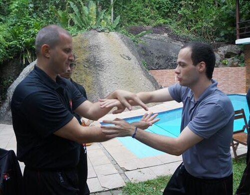 seminario-kung-fu-wing-chun-rj-21 seminarios de kung fu - seminario kung fu wing chun rj 21 500x389 - Seminarios de Kung Fu da Moy Ka Wing Chun