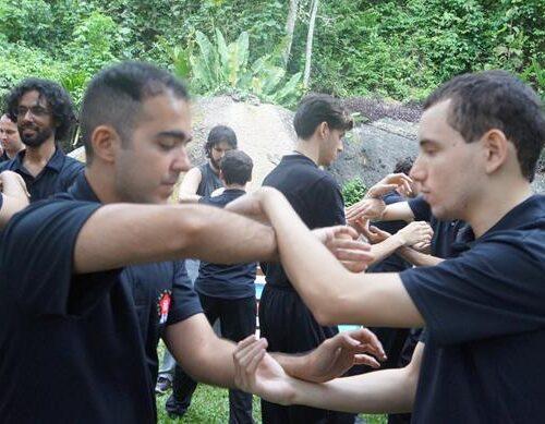 seminario-kung-fu-wing-chun-rj-22 seminarios de kung fu - seminario kung fu wing chun rj 22 500x389 - Seminarios de Kung Fu da Moy Ka Wing Chun