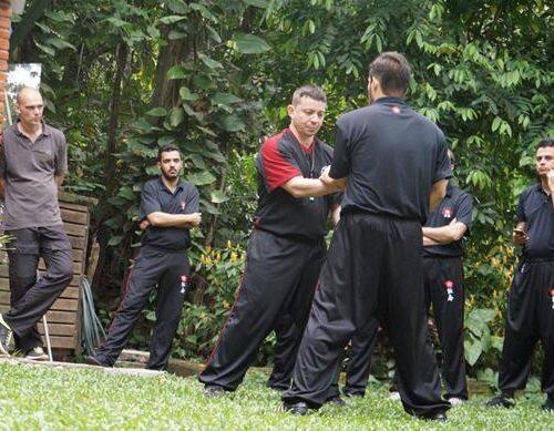 seminario-kung-fu-wing-chun-rj-25 seminarios de kung fu - seminario kung fu wing chun rj 25 500x389 - Seminarios de Kung Fu da Moy Ka Wing Chun