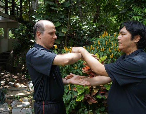 seminario-kung-fu-wing-chun-rj-42 seminarios de kung fu - seminario kung fu wing chun rj 42 500x389 - Seminarios de Kung Fu da Moy Ka Wing Chun