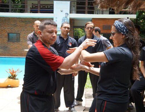 seminario-kung-fu-wing-chun-rj-45 seminarios de kung fu - seminario kung fu wing chun rj 45 500x389 - Seminarios de Kung Fu da Moy Ka Wing Chun