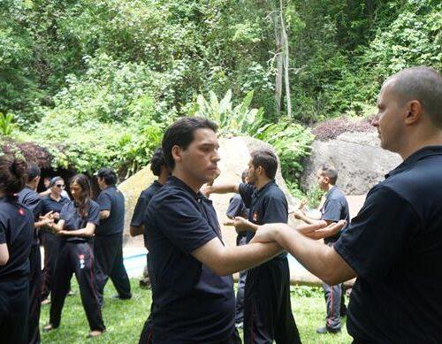 seminario-kung-fu-wing-chun-rj-49 seminarios de kung fu - seminario kung fu wing chun rj 49 500x389 - Seminarios de Kung Fu da Moy Ka Wing Chun