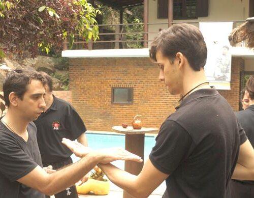 seminario-kung-fu-wing-chun-rj-51 seminarios de kung fu - seminario kung fu wing chun rj 51 500x389 - Seminarios de Kung Fu da Moy Ka Wing Chun