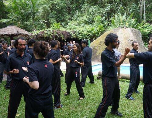 seminario-kung-fu-wing-chun-rj-52 seminarios de kung fu - seminario kung fu wing chun rj 52 500x389 - Seminarios de Kung Fu da Moy Ka Wing Chun