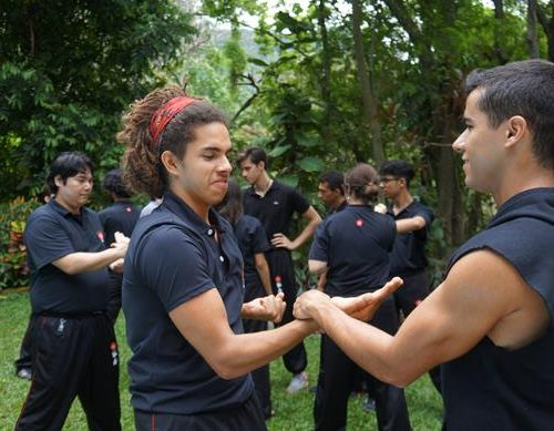 seminario-kung-fu-wing-chun-rj-59 seminarios de kung fu - seminario kung fu wing chun rj 59 500x389 - Seminarios de Kung Fu da Moy Ka Wing Chun