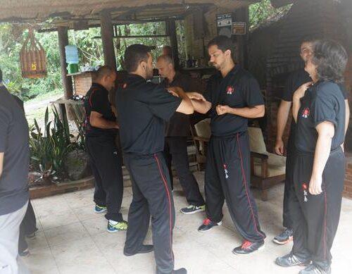 seminario-kung-fu-wing-chun-rj-63 seminarios de kung fu - seminario kung fu wing chun rj 63 500x389 - Seminarios de Kung Fu da Moy Ka Wing Chun