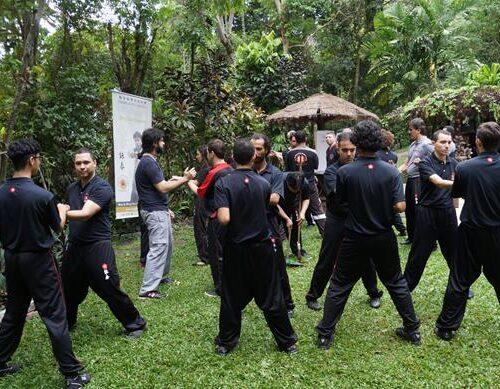 seminario-kung-fu-wing-chun-rj-65 seminarios de kung fu - seminario kung fu wing chun rj 65 500x389 - Seminarios de Kung Fu da Moy Ka Wing Chun