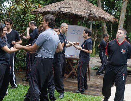 seminario-kung-fu-wing-chun-rj-67 seminarios de kung fu - seminario kung fu wing chun rj 67 500x389 - Seminarios de Kung Fu da Moy Ka Wing Chun
