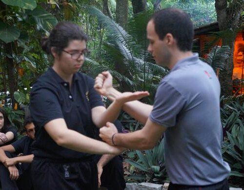 seminario-kung-fu-wing-chun-rj-9 seminarios de kung fu - seminario kung fu wing chun rj 9 500x389 - Seminarios de Kung Fu da Moy Ka Wing Chun
