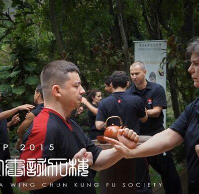 wing-chun-kung-fu-brasil-niteroi-rio-rj-3 seminarios de kung fu - wing chun kung fu brasil niteroi rio rj 3 400x389 - Seminarios de Kung Fu da Moy Ka Wing Chun