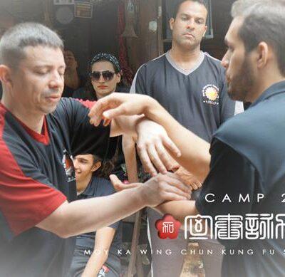 seminarios de kung fu