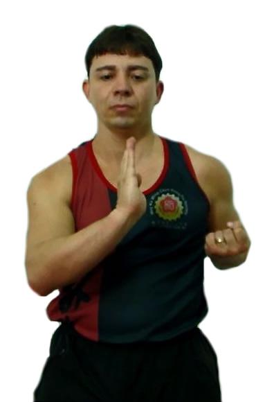 Wing Chun Siu Nim Tau wing chun siu nim tau - siu nim tau kung fu taan sau 1 - Wing Chun Siu Nim Tau – Nível Básico