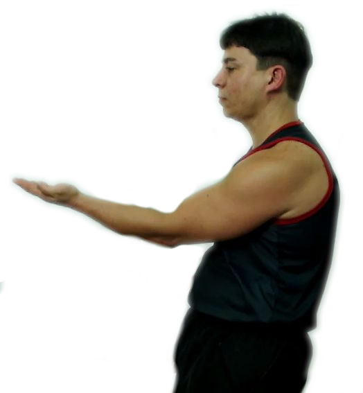 Wing Chun Siu Nim Tau wing chun siu nim tau - siu nim tau wing chun kung fu - Wing Chun Siu Nim Tau – Nível Básico