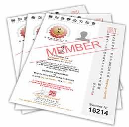 certificados-wing-chun-diploma-kung-fu-ving-tsun-ip-man-sp-to-ro-mg-ba-ce-al-rs-pr