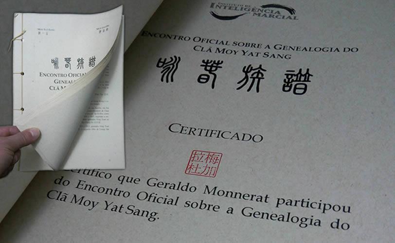 mestres de wing chun no brasil - genealogia do wing chun ip man - Mestres de Wing Chun no Brasil – Família Moy Ka Lai To