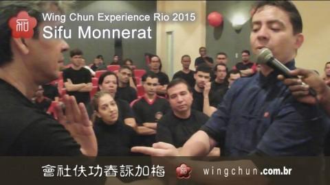 Seminário Anual Wing Chun Experience Rio 2015