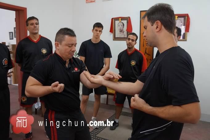 Seminarios de Wing Chun RJ